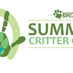Houston SPCA Camp Logo